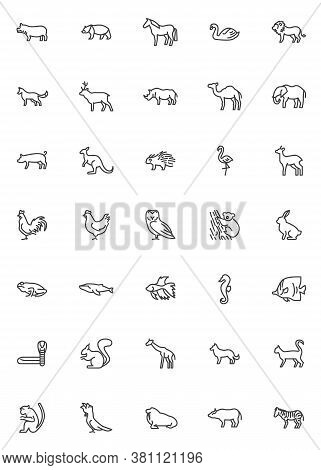 Wildlife Animals Line Icons Set. Zoo Animal Linear Style Symbols Collection, Outline Signs Pack. Vec