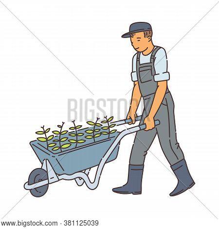 Farmer Man Walking With Metal Wheel Barrow With Green Plants