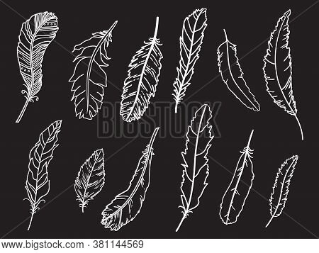 Feather. Hand Drawn White Feathers On Isolated Black Background. Black And White Illustration