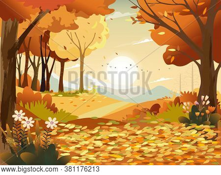 Autumn Landscape Wonderland Forest With Grass Land, Mid Autumn Natural In Orange Foliage, Fall Seaso