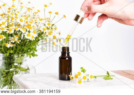Glass Brown Bottle Of Essence Or Serum And With Chamomile Flowers