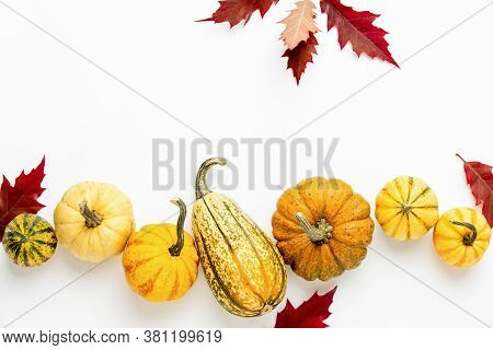 Fall Template With Pumpkins Lying Over White Background, Top Down View, Copy Space For A Text
