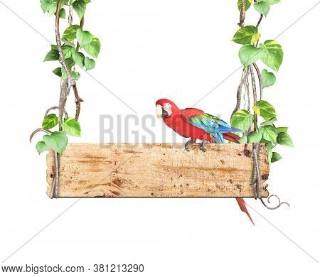 Old wooden board, Ara macao parrot, lianas and leaves of tropical plant. Jungle wood sign with liana branches and Scarlet Macaw. Isolated on white background. Mock up template. Copy space for text