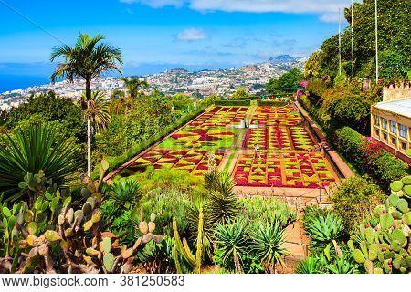 Funchal, Madeira - July 09, 2014: Madeira Botanical Garden Or Jardim Botanico In Funchal City, Madei