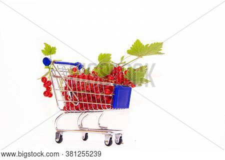 Cart With Berries On A White Background Red Currant . Summer Berry. Red Berries Are A Whole Cartload