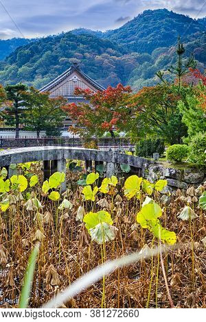 Traditional Japanese Landscape With Shinto Shrine And Red Maple Trees In Foregorund.vertical Image