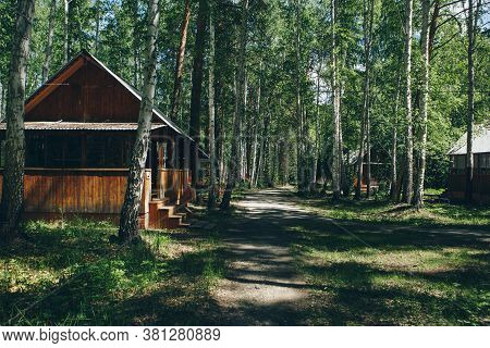 Summer Wooden House In A Birch Grove. Camping In The Woods. Tourist Base For Travelers  Recreation.
