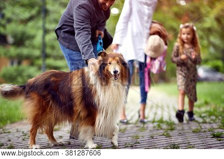 Family spending leisure time together in a park with shetland sheepdog