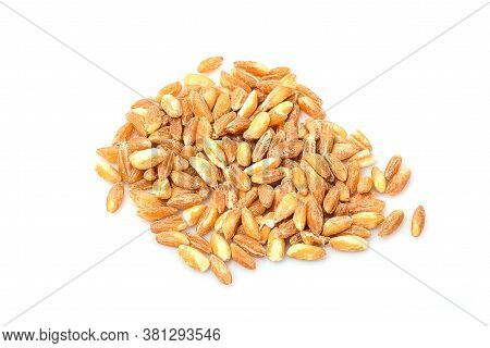 Close Up Of Wheat Grains Isolated On White Background