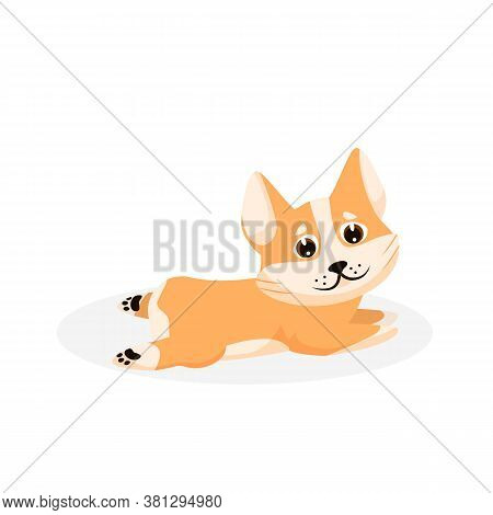 Corgi Puppy. Isolated Playful Purebred Red Corgi Dog Puppy Icon. Cute Funny Doggy Pet Animal Cartoon