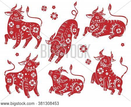 Chinese New Year 2021 Ox. Red And White Paper Cut Silhouette Buffalo With Floral Asian Pattern. Bull