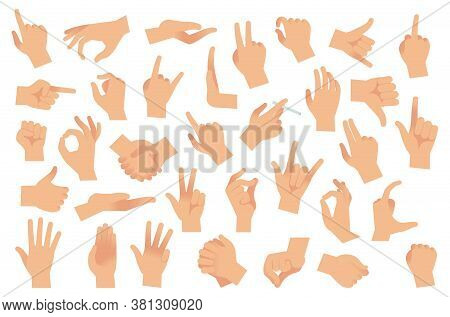 Hand Gestures. Various Arms, Human Hands, Ok, Thumb Up And Pointing Finger, Pinch And Fist. Optimist