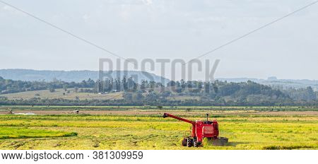 Self-propelled Machine And Rice Harvest In Brazil