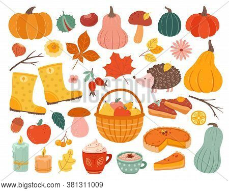 Cute Autumn Elements. Fall Pumpkin, Hedgehog November Forest Leaves. Thanksgiving And Harvest Season