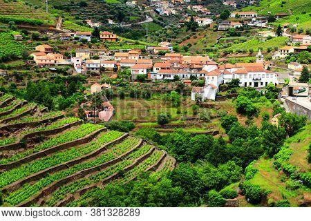 Regua In Douro Valley. Portugal Vineyard Countryside Landscape. Alto Douro Doc Wine Making Landscape