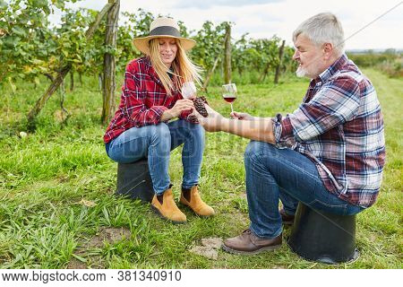 Winemaker couple drinks a glass of red wine together in the vineyard during the wine harvest