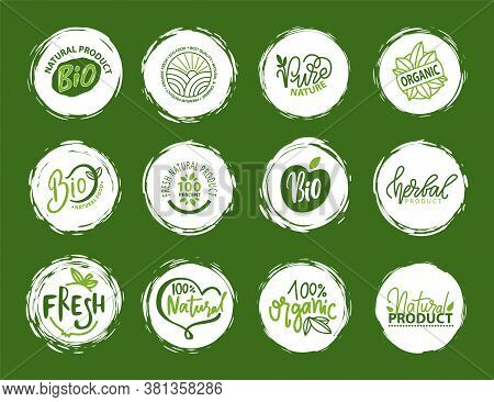 Fresh Vegan Food Label, Green Poster Natural And Herbal Product, 100 Percent Organic, Healthy Produc