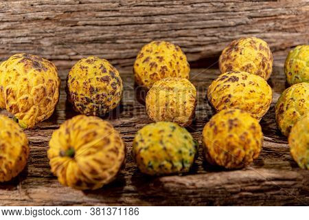 Fruit Of The Annona Crassiflora Tree Known As