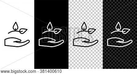 Set Line Leaf In Hand Of Environmental Protection Icon Isolated On Black And White Background. Seed