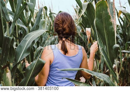 Beautiful Woman In Nature. Happy People Lifestyle.woman Walking In Corn Field. Nature Lifestyle. Hap