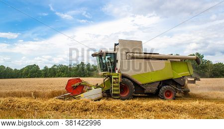 Combine Harvester Harvests Ripe Golden Wheat In Field, Against Of Trees And Beauty Blue Sky With Clo
