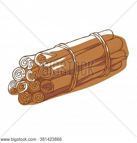Cinnamon Sticks In A Heap, Aromatic From Dried Bark