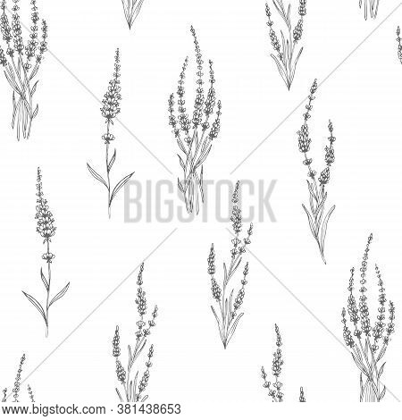 Lavender Seamless Pattern. Perfect For Wallpapers, Web Page Backgrounds, Surface Textures, Textile.