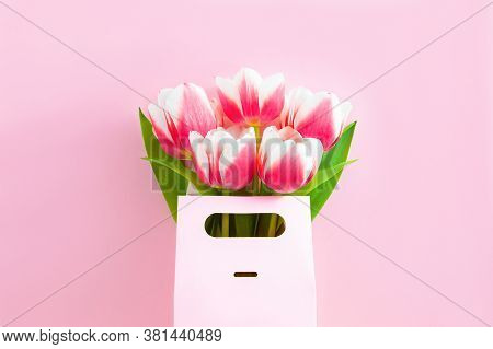 Five Pink And White Tulips In Gift Box On Pink Background, Top View. Women's Day Or Mother's Day Con