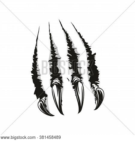 Claws Scratches Of Wild Animal. Vector Tiger, Bear Or Monster Cat Claw Torn Slashes