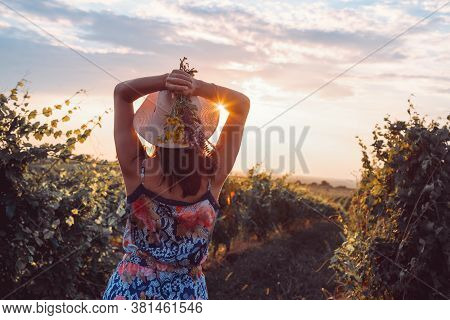 Beautiful Woman In Vineyard In Nature. Happy People Lifestyle. Woman Holding Wild Flower In Vineyard
