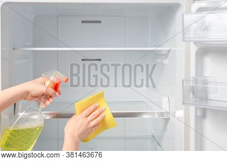 House Cleaning - Spray Bottle With Detergents For Washing The Fridge. Woman Wipes The Shelves Of A C