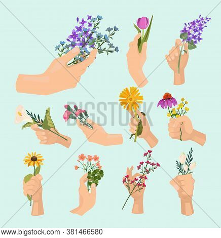 Flowers In Hands. Beauty Ladies Hand Holding Various Colored Bouquet Lady Fresh Plants Vector Cartoo