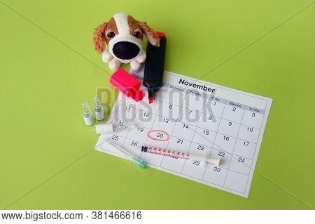 A Syringe With Ampoules, A Soft Toy A Dog And A Calendar With A Marked Date On Light Green Backgroun