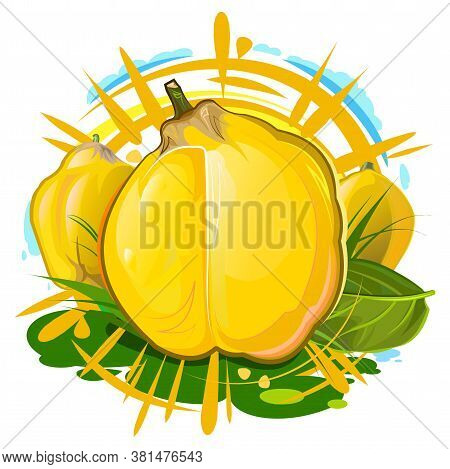 Quince. Summer Yellow Fruit. Sun Rays And Juice Splashes. Garden Agriculture Plant. Autumn Southern