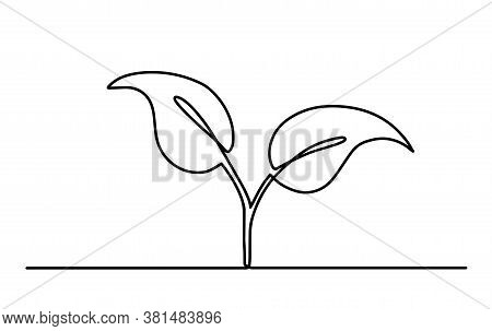 One Continuous Line Of Art Is Growing Sprouts. Plant Seed Leaves Grow Soil Seedling Eco-natural Farm
