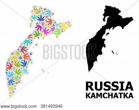 Vector Hemp Mosaic And Solid Map Of Kamchatka Peninsula. Map Of Kamchatka Peninsula Vector Mosaic Fo