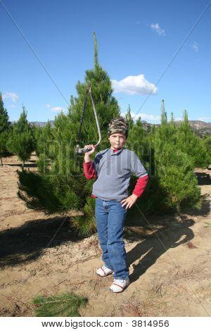 Christmas Tree Boy