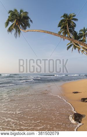 Scenic Tropical Waterscape With Indian Ocean Surf, Pure Yelow Sand, Curved Palms Above The Water And