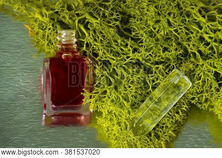 A Bottle Of Aurasoma With The Red Essence And Crystal On The Moss Background.