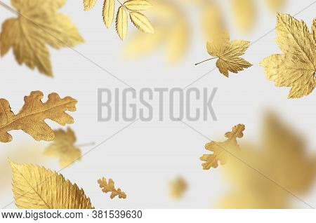 Golden Flying Autumn Leaves Of Different Shapes On Light Gray Background. Autumn Concept, Fall Backg
