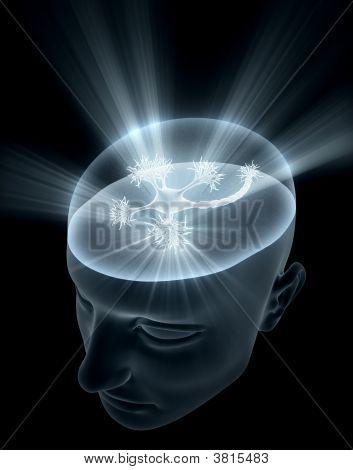 Neuron Head