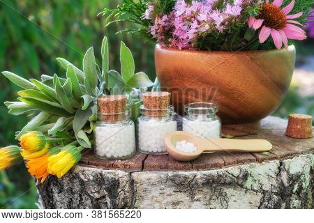 Three Bottle Of Homeopathic Globules, Wooden Mortar Of Medicinal Herbs, Healing Plants On Stump Outd