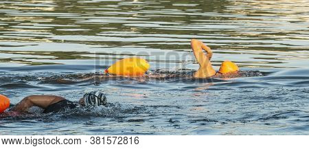 One Caucasion And One African American Swimmers Swimming Side By Side Training For Triathlons In The