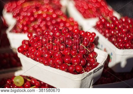 Background Of Red Currants. Selective And Soft Focus. Ripe And Juicy Red Currants Are Sold At The Fa