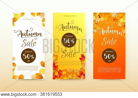 Autumn Sale Tag Banner And Autumn Dry Leaf Falling On A White Background, Dry Of Maple Leaf, For Aut