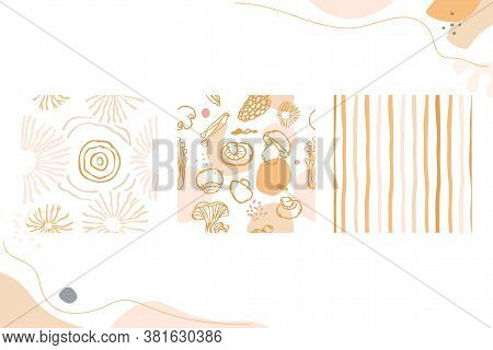 Mushroom Style Seamless Pattern Set. Spores, Stripes, And Edible Mushrooms With Transparent Backgrou