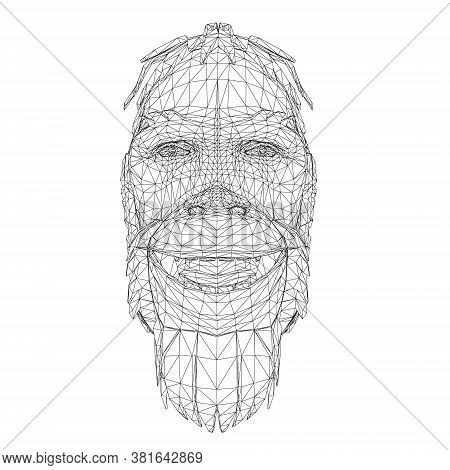 Wireframe Low Poly Head Of A Neanderthal. Wireframe Head Of A Prehistoric Man. Front View. 3d. Vecto