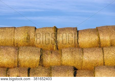 A Large Number Of Straw Stacks Stacked On Top Of Each Other For Storage In The Winter, Straw Is Used