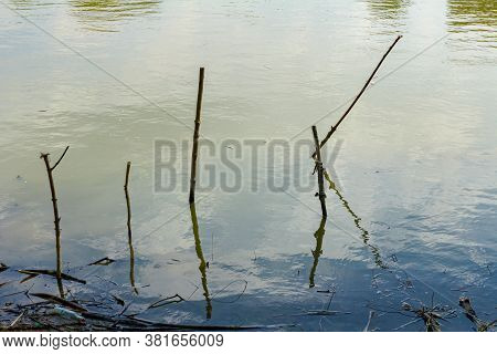 Wooden Stakes Stubbed Into The Shallow Water, Improvised Dock, Place For Docking Fishing Boats On Sh