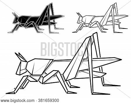 Vector Monochrome Image Of Paper Origami Of Grasshopper (contour Drawing By Line).